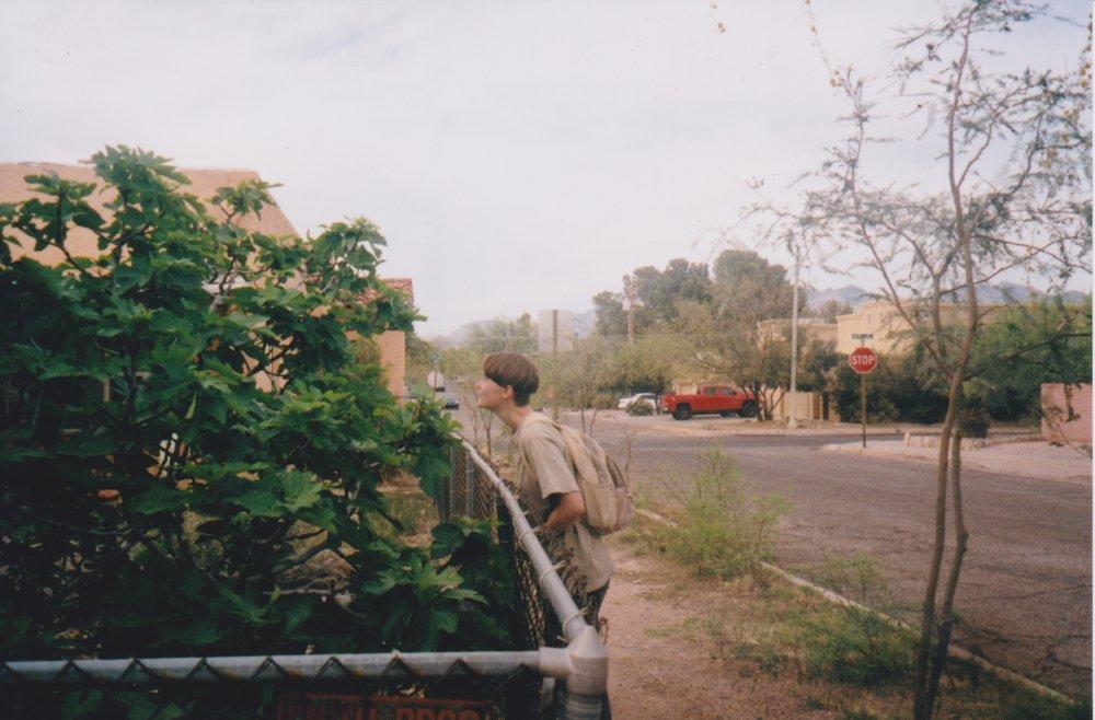 arizona 25.jpeg