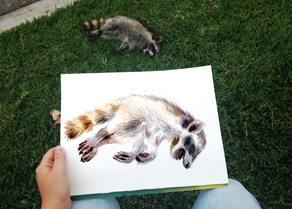 Adelya_Tumasyeva_watercolor_pleinair_raccoon1.jpg