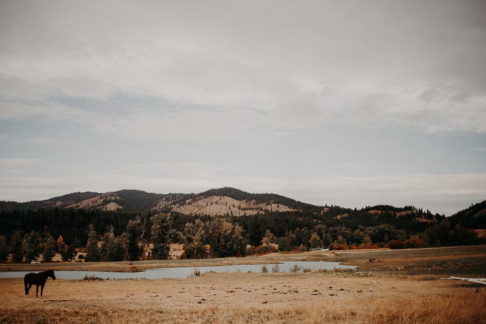 cattle-barn-wedding-cle-elum-wedding-megan-gallagher-photography-winston-salem-photographer (7).jpg