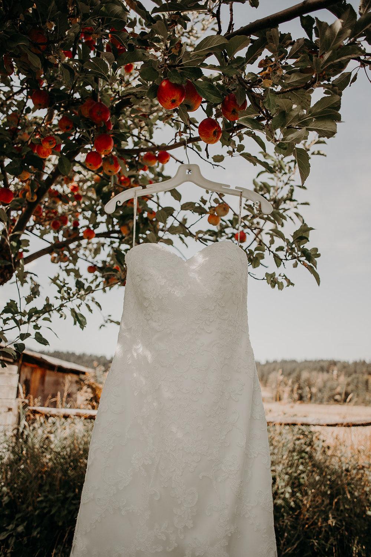 cattle-barn-wedding-cle-elum-wedding-megan-gallagher-photography-winston-salem-photographer (20).jpg