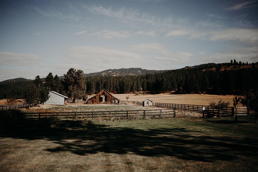 cattle-barn-wedding-cle-elum-wedding-megan-gallagher-photography-winston-salem-photographer (59).jpg