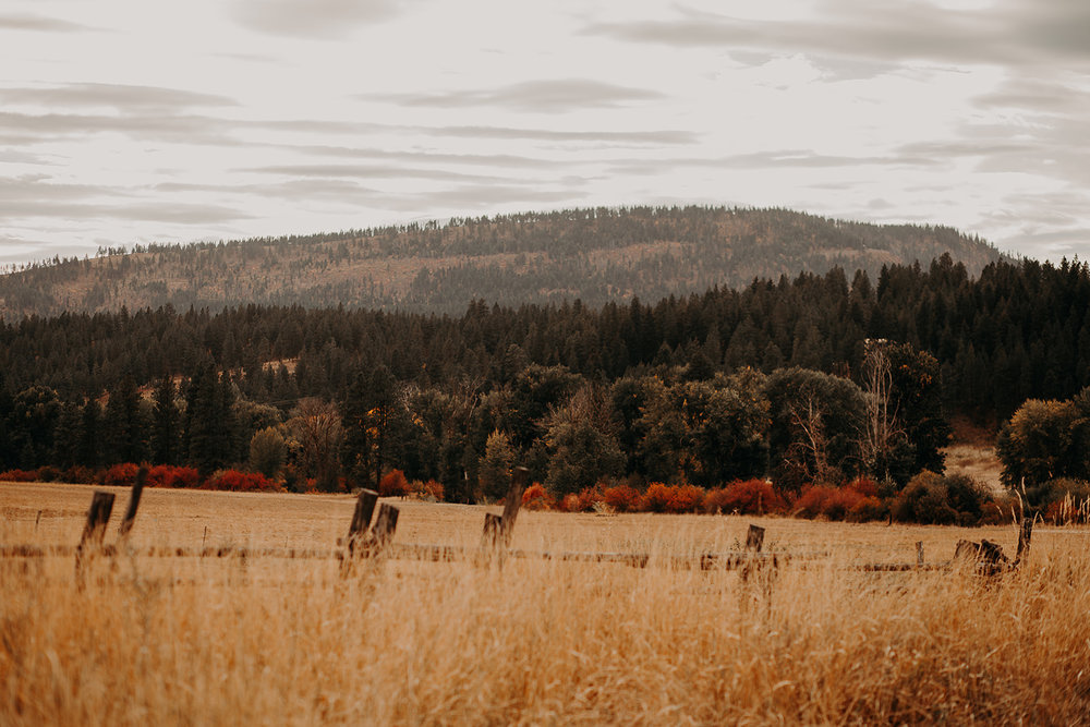 cattle-barn-cle-elum-washington-wedding-megan-gallagher-photography-winston-salem-photographer (9).jpg