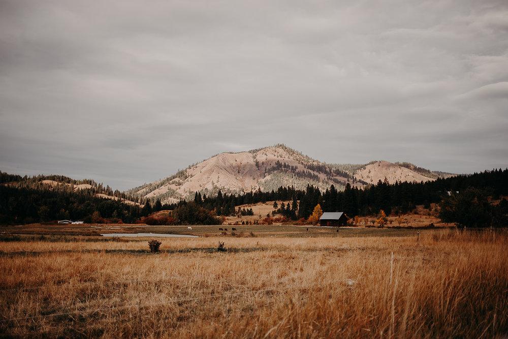 cattle-barn-cle-elum-washington-wedding-megan-gallagher-photography-winston-salem-photographer (28).jpg