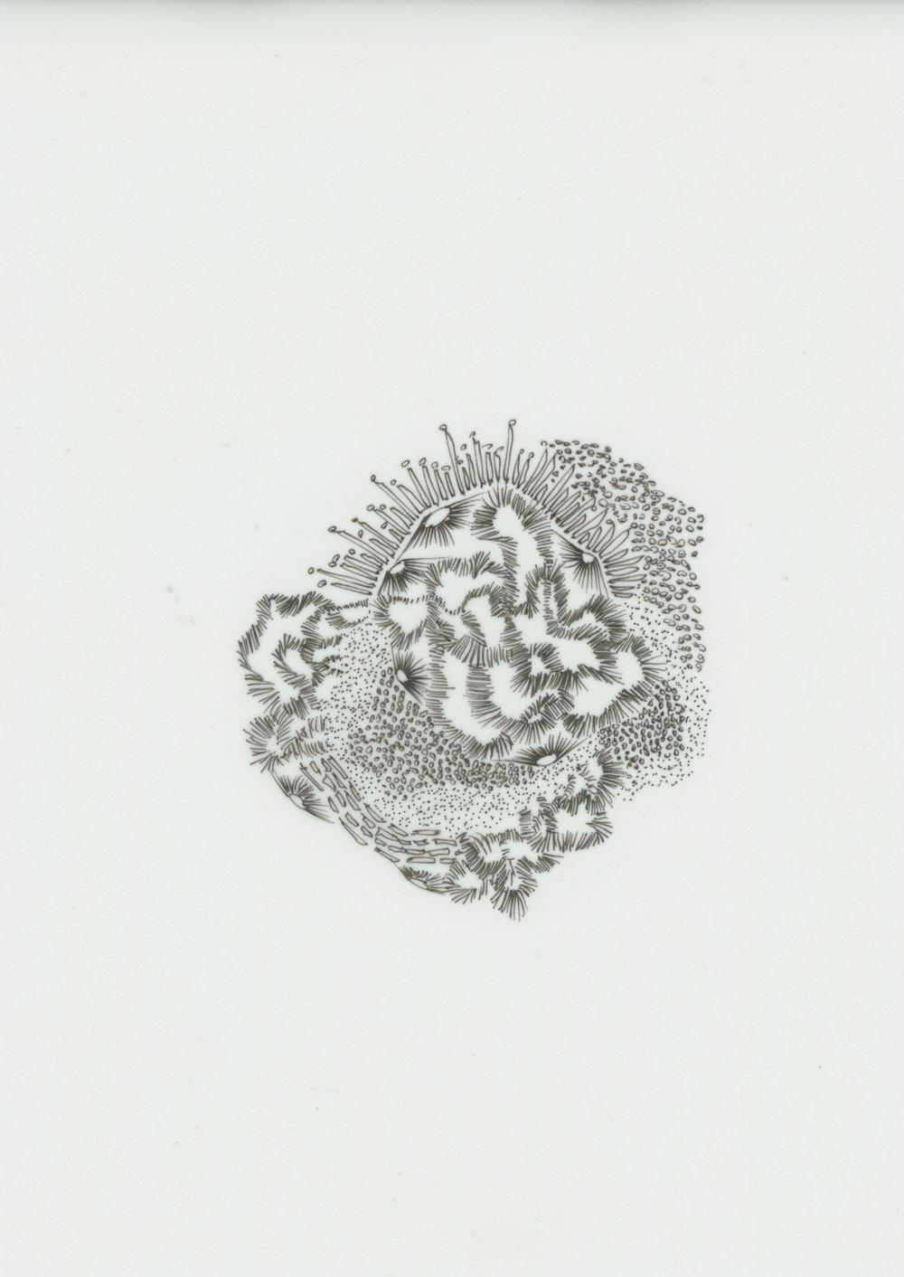 120618.249.SIGGRAPH Asia.jpg