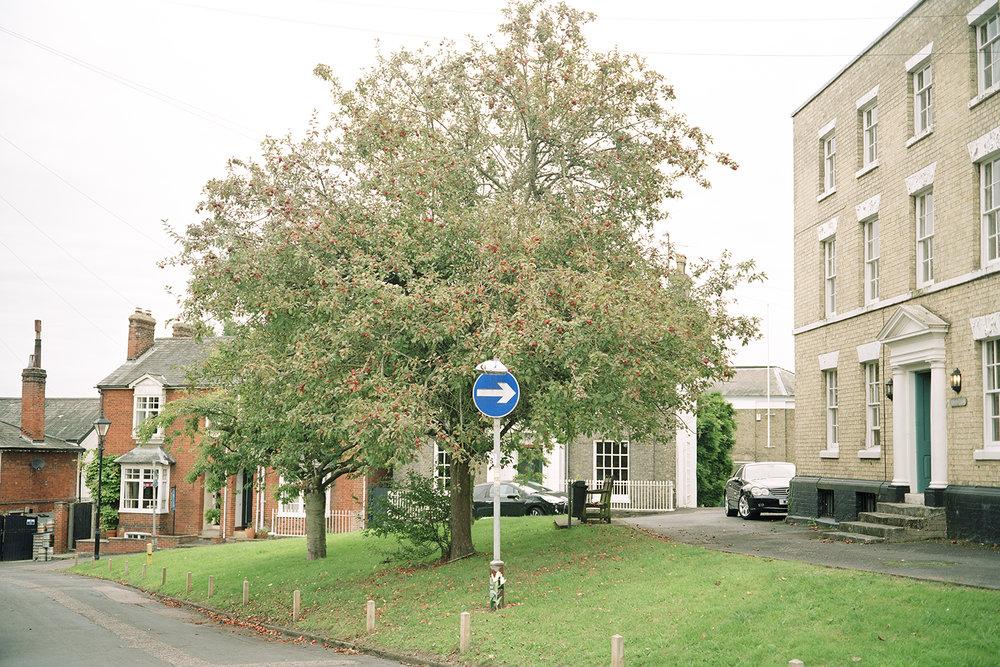 manning Tree -