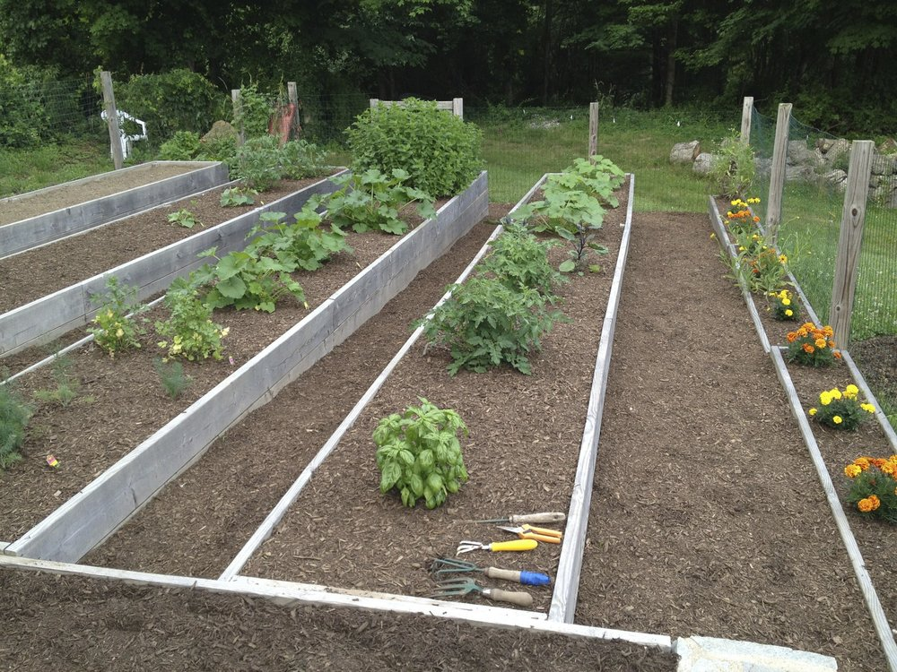 Beautiful raised beds and walkways