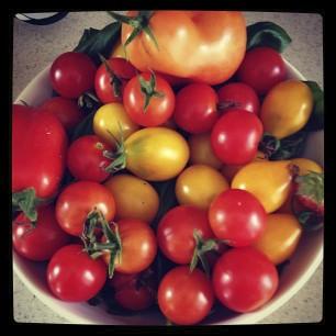 tomatoart.jpg