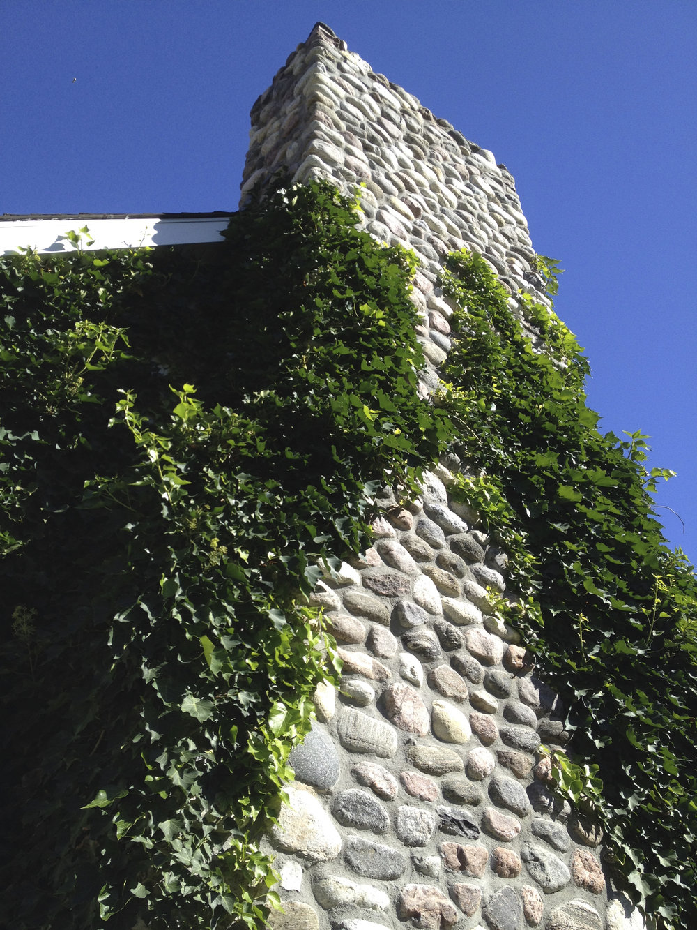 Ivy Chimney