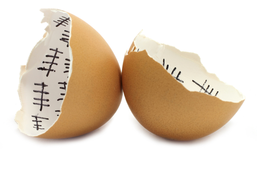Cracked hatching egg_small.jpg