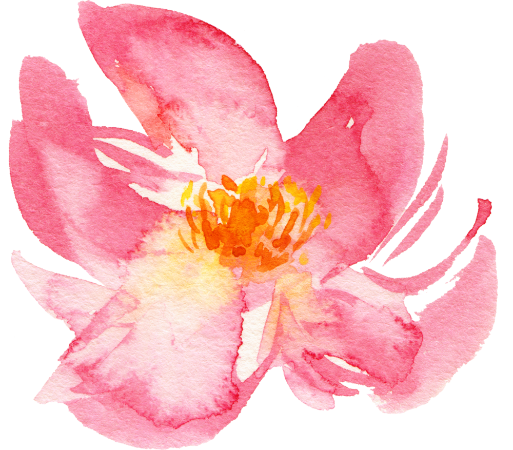 flower Naana.png