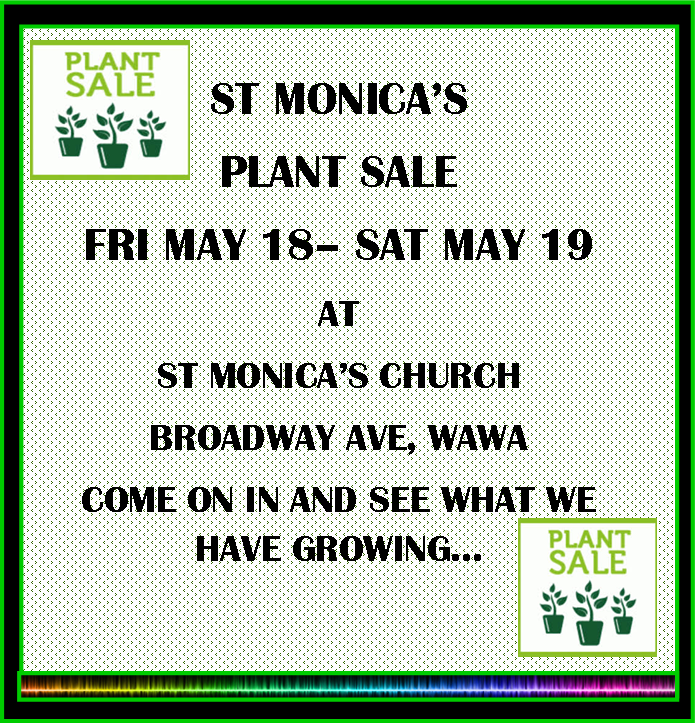 ST MONICAS PLANT SALE MAY 18-19 2018.png