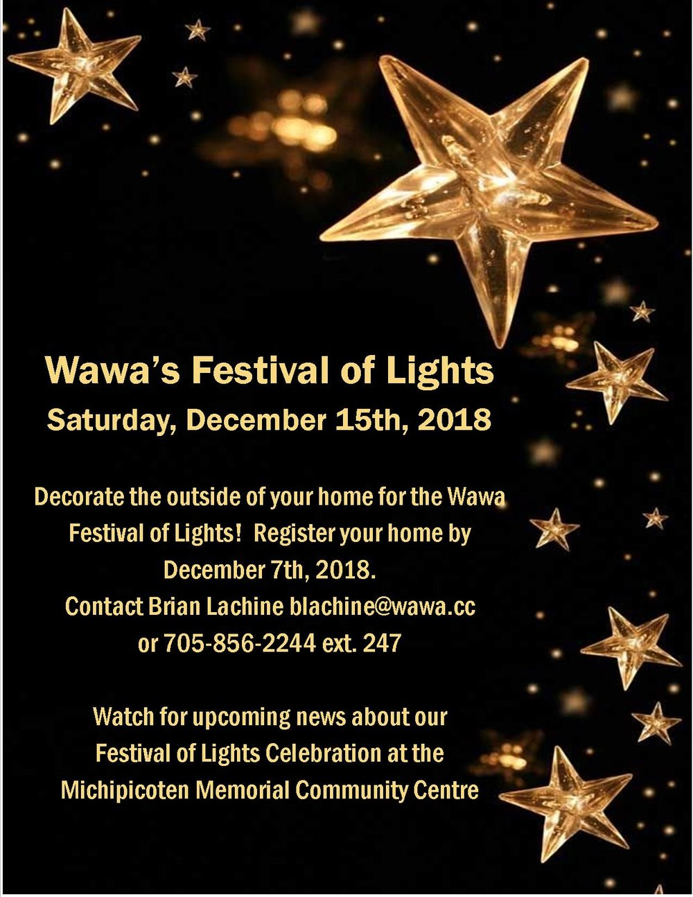 Festival of Lights Flyer.jpg