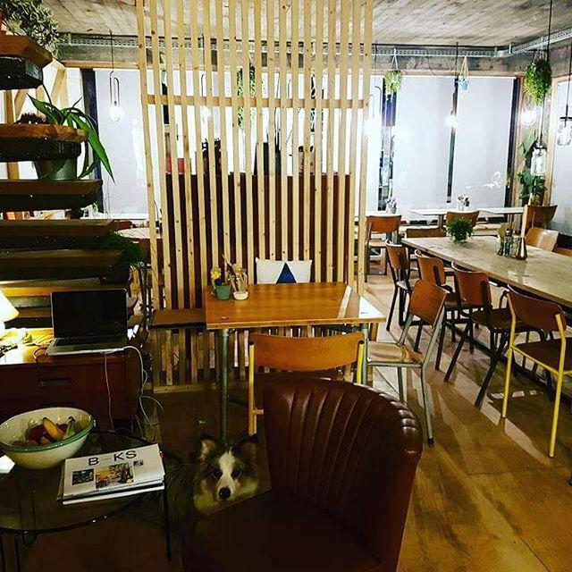 Superadresje# kleinkeuken@kortrijk#veggiekeuken#food#mooiplekje#healthyfood#njamnjam