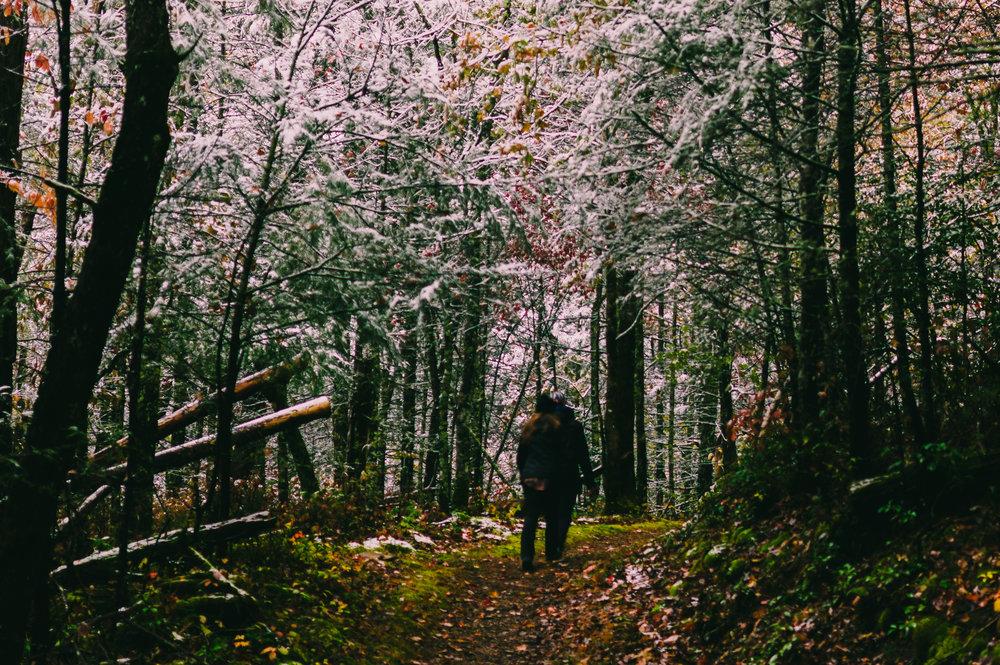 Cades Trail.jpg