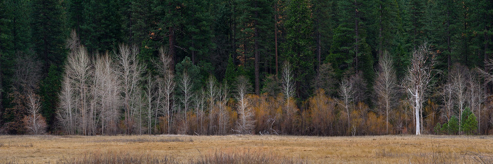 Merced Meadows