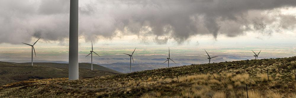 Wildhorse Windfarm