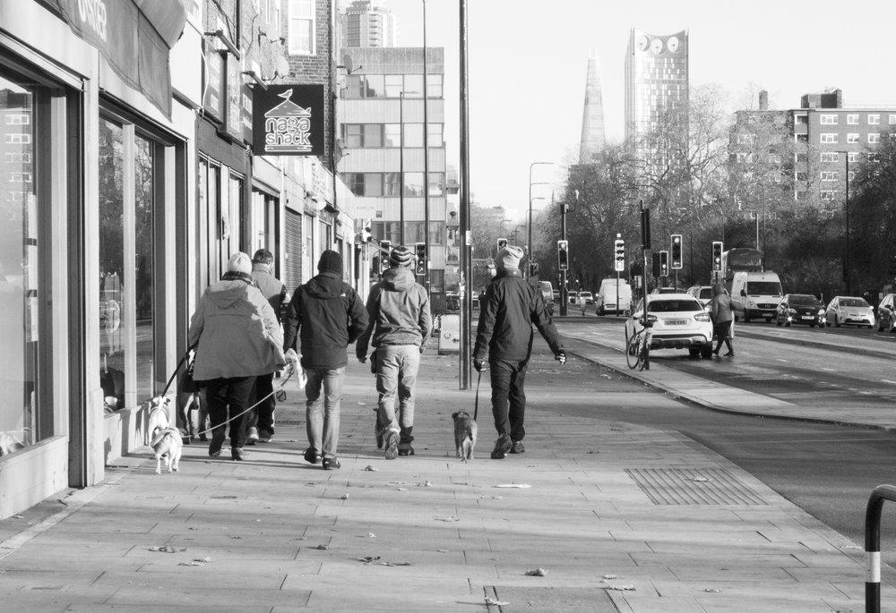 dogwalkerswalking.JPG