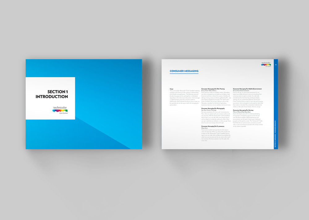 Technicolor Style Guide Double Mockup smaller.jpg