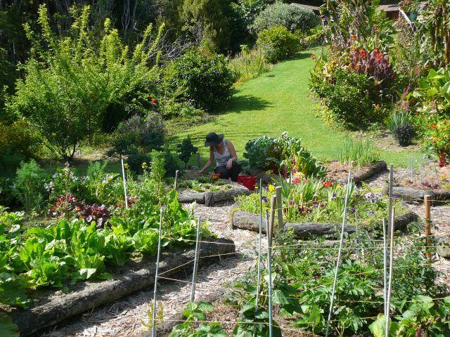 05 garden work meditation.jpg