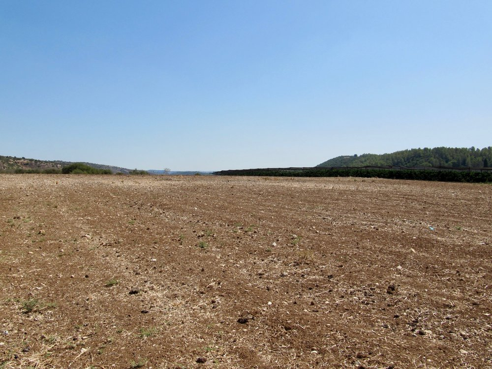 Valley of Elah - You would never know that a battle took place in this farmer's field thousands of years ago.