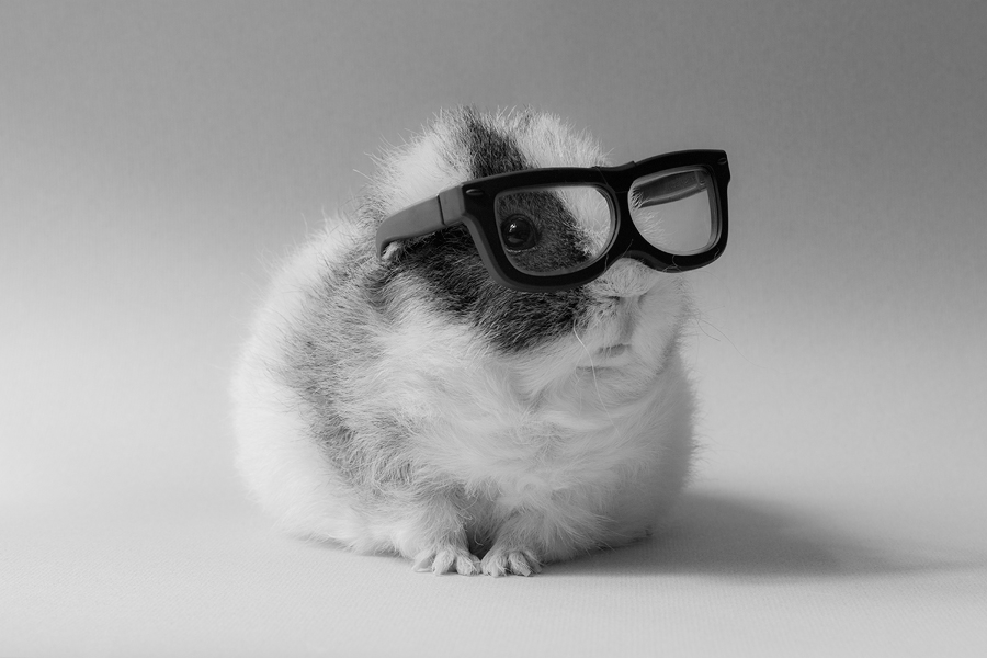 Don't Let the Glasses Fool You - The Blog: Writing, Creativity, and Humor