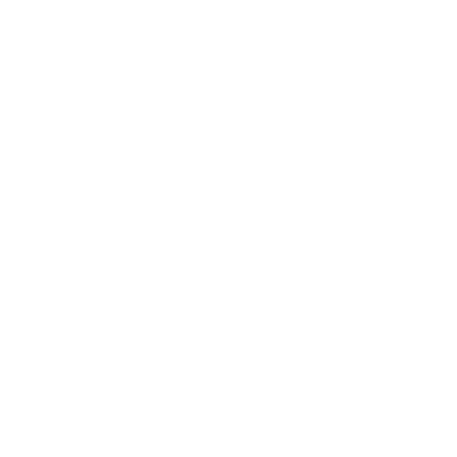 EMF Kill (Sleep) Switch - Optimizing  your Health in a Modern World