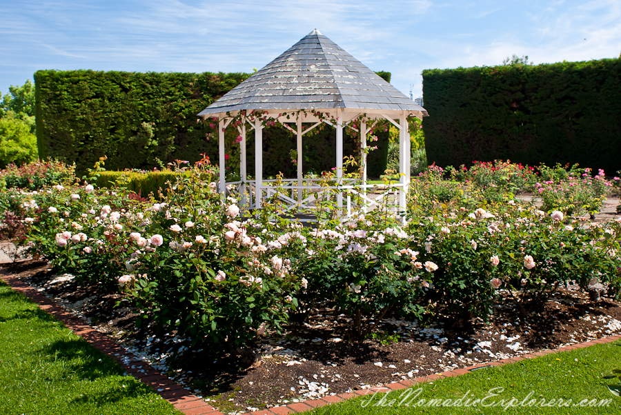 St Kilda Rose Garden, St Kilda Botanic Gardens.