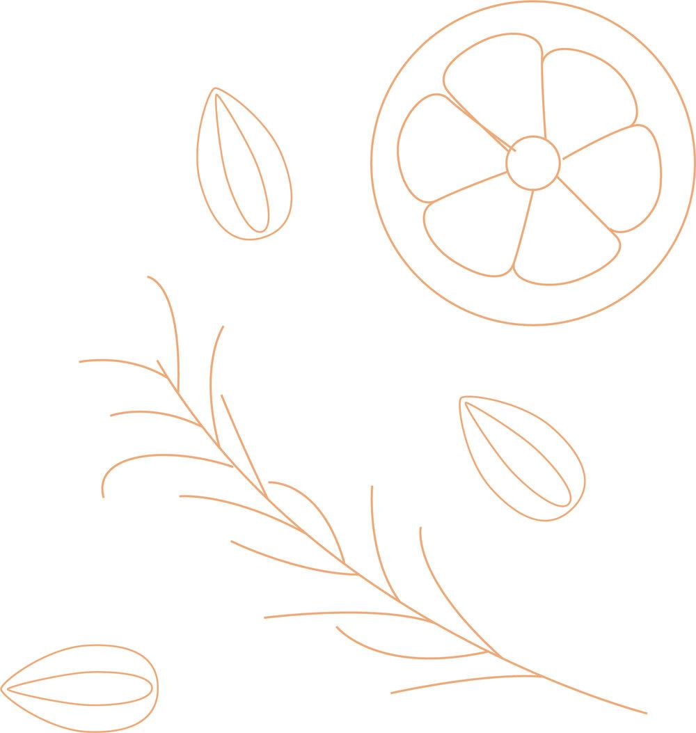 RECIPE 33 Lemon Rosemary.jpg