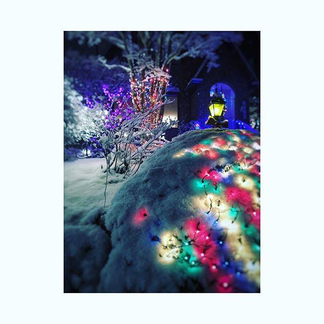 Our neighborhood is magical.  Merry Christmas, Everyone. 🎄❤️🎄