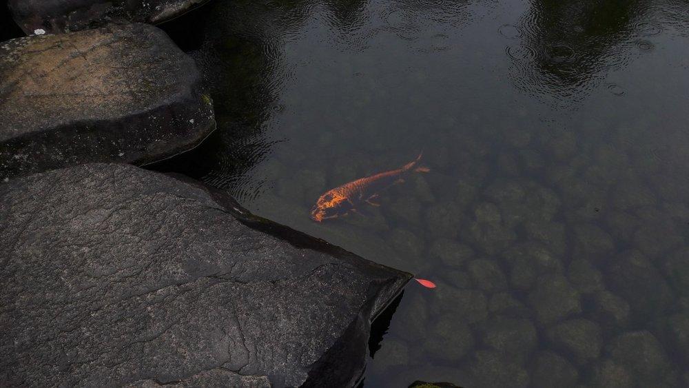 Himeji, Japon