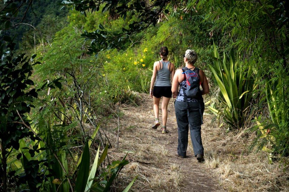 Canalisation des Orangers, Île de la Réunion