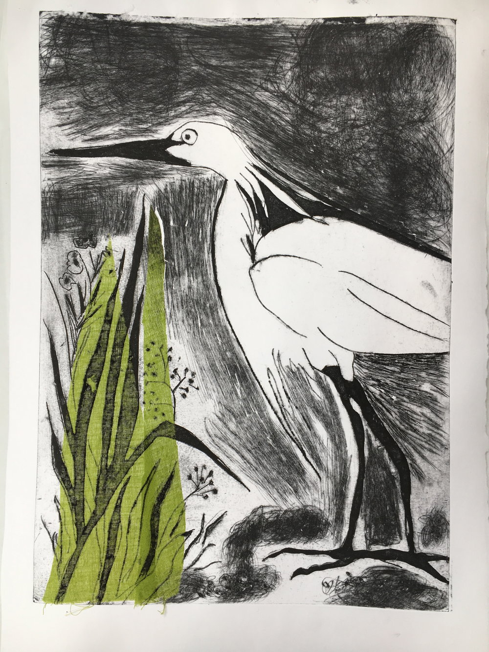 White Egret with colour added