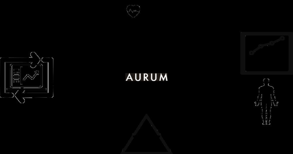 Aurum Loop.png