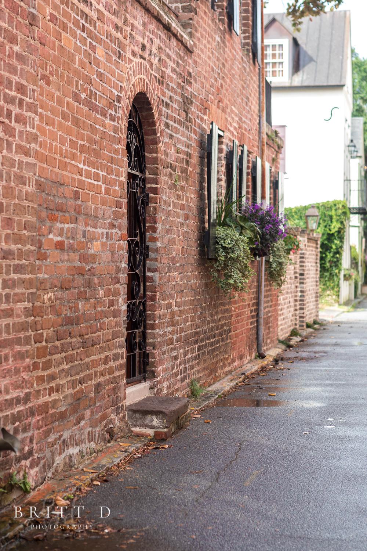 Charleston photographer-21.jpg