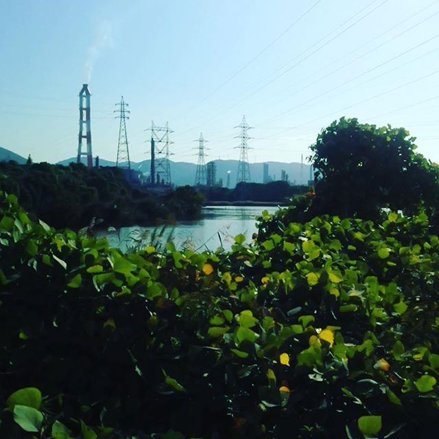 Mizushima industrial complex, Okayama - chemicals, gas and nature.
