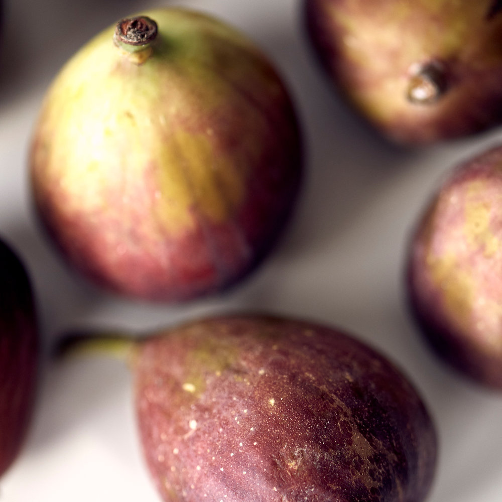 close up figs.jpg