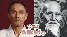 Aikido.PNG