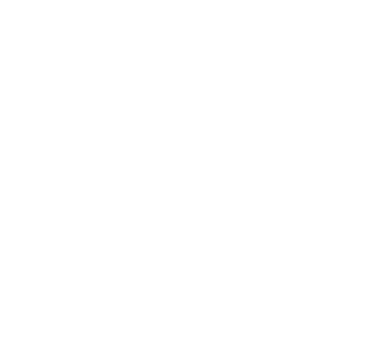 Chico Salt Company