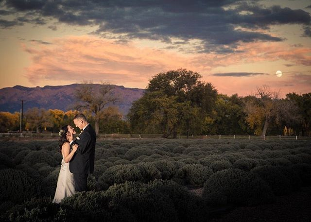 New blog post! Best Wedding Venues in New Mexico.