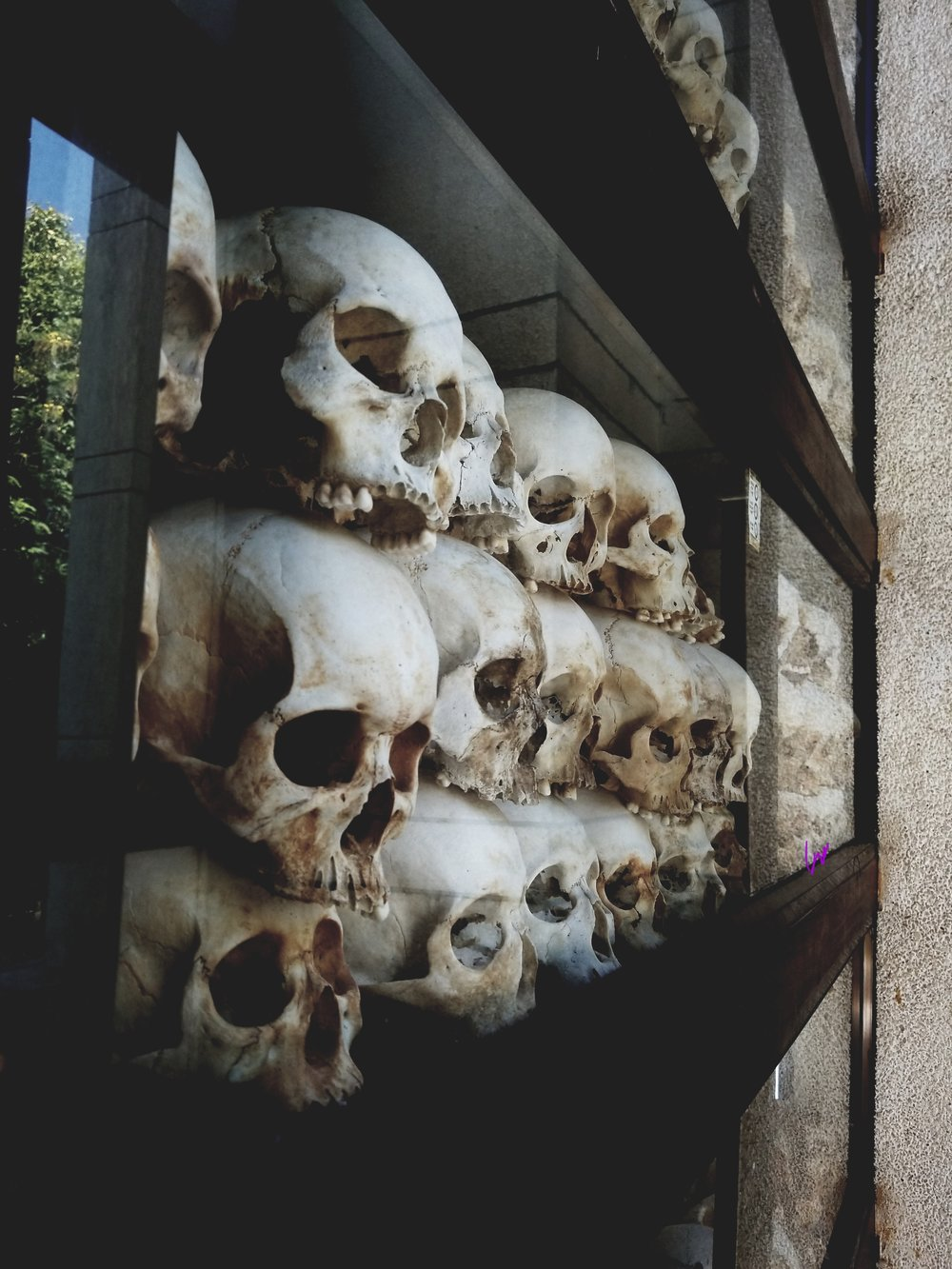 Hundreds of skulls that are cared for and on respectful display at The Killing Fields