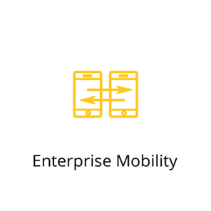 icon-EnterpriseMobility.png