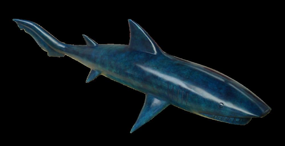 Requin_bleu1_1.png
