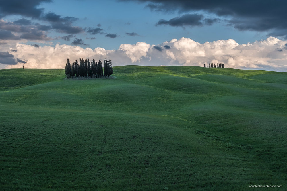 Tuscany - Italy - Some cypress trees in Italy's Tuscany bend under the strong winds of an upcoming storm that slowly rises in the distance - Thundering Mountains