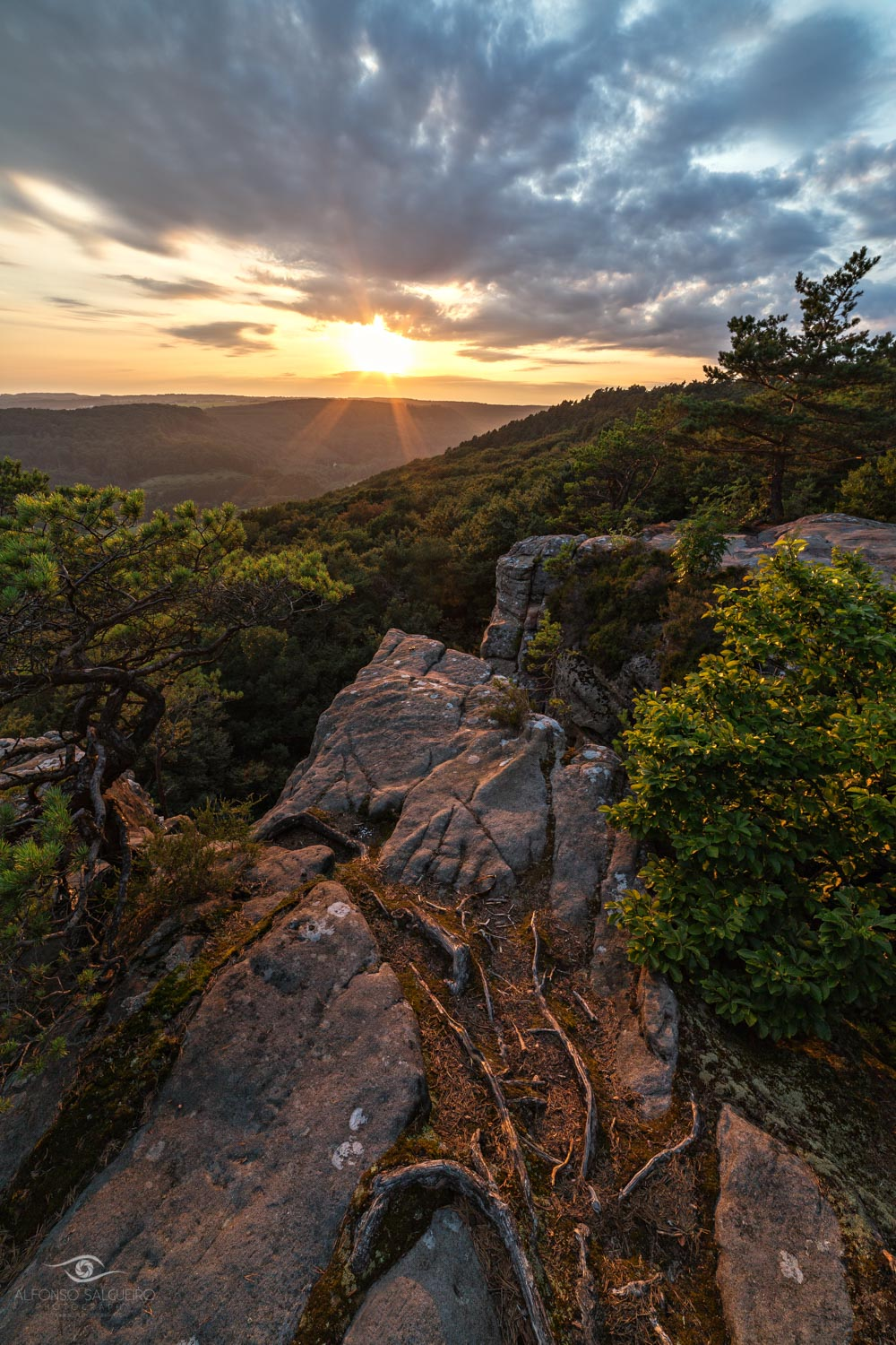 Photography Workshop Mullerthal - Luxembourg - Plateau