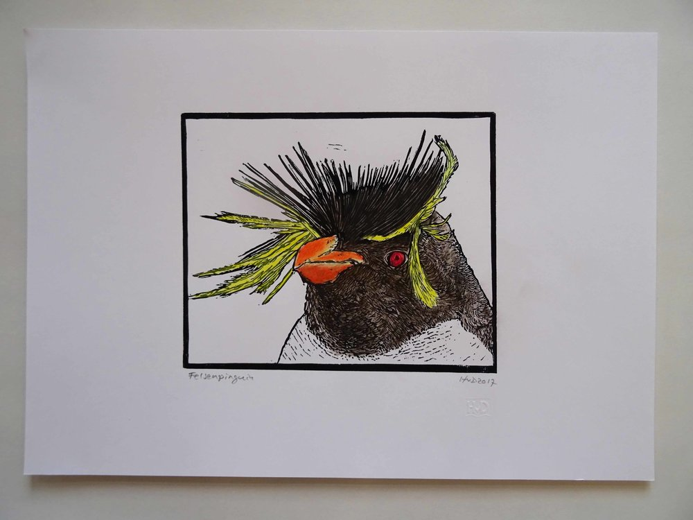 255 - rock hopper pinguin 2, 17x21 cm, coloured linocut, 60 €