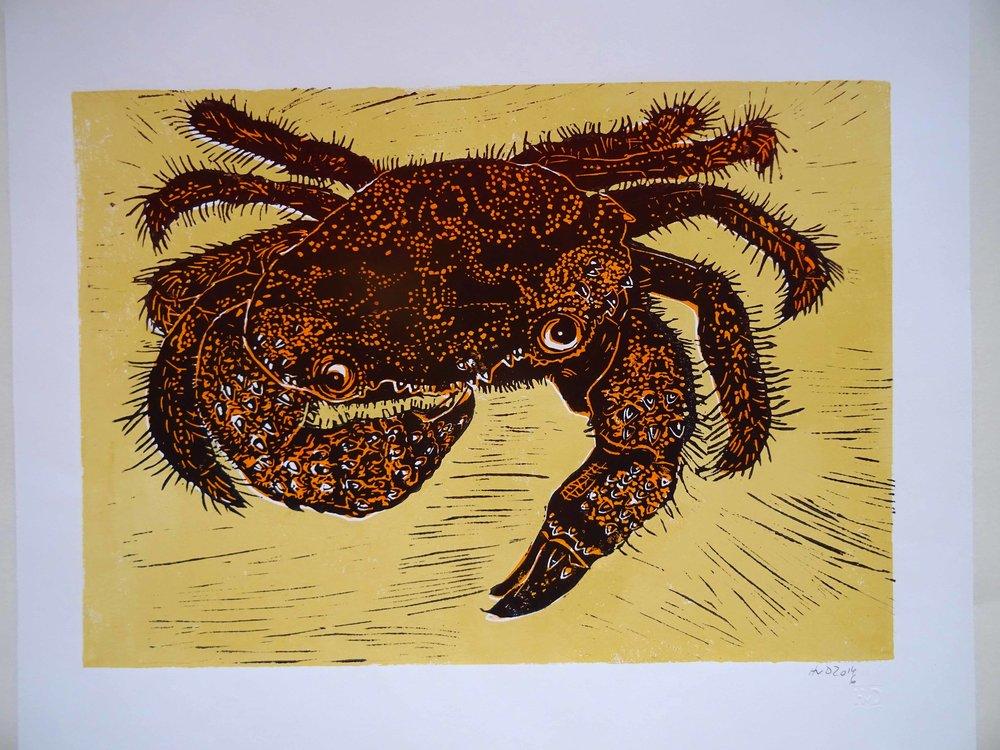111 - Krabbe, 2-plate lino 30x42 cm, 90 €