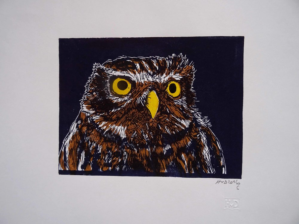 227 - Steinkauz, 2-plate lino 21x30 cm, 50 €