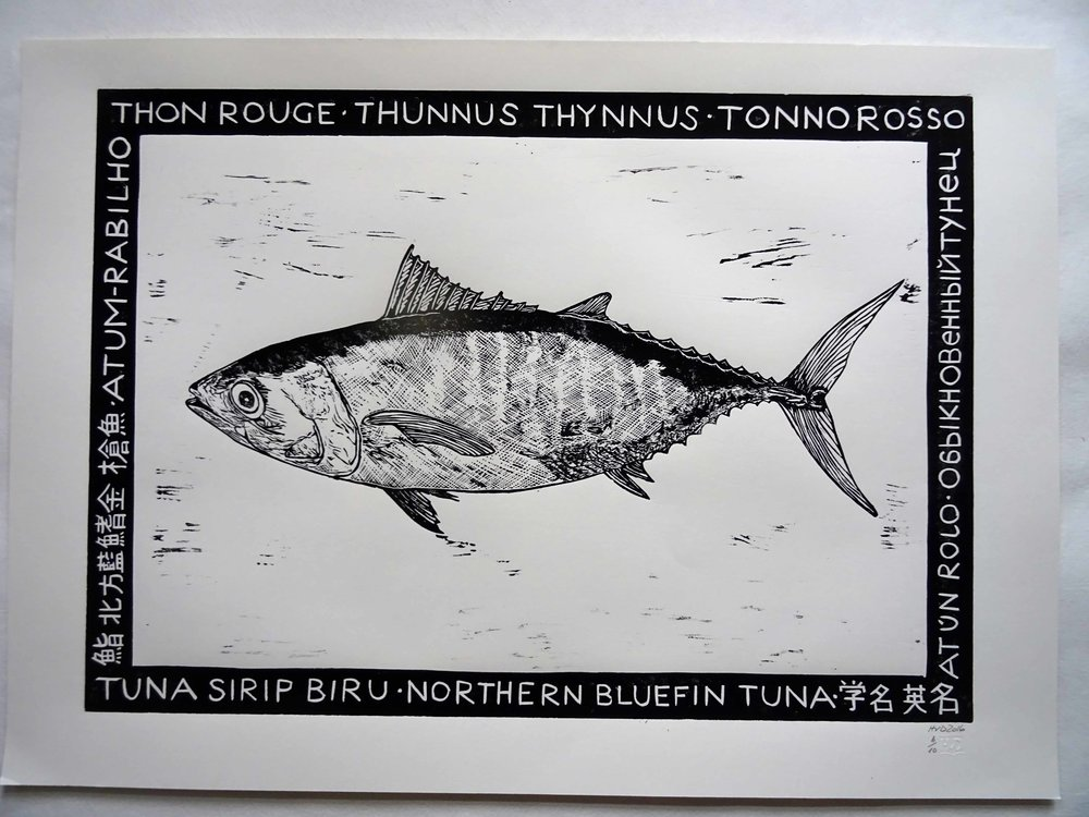 62 - Thon rouge, lino 42x60 cm, 60 €, sales go to Greepeace, ocean conservation