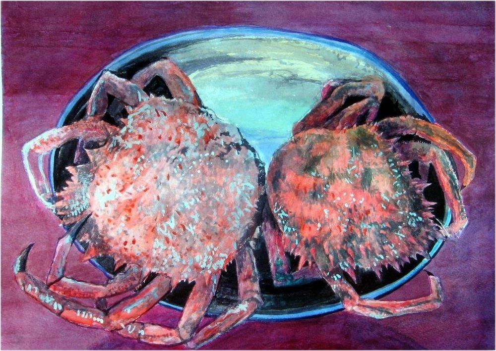 Seespinnen, aquarell