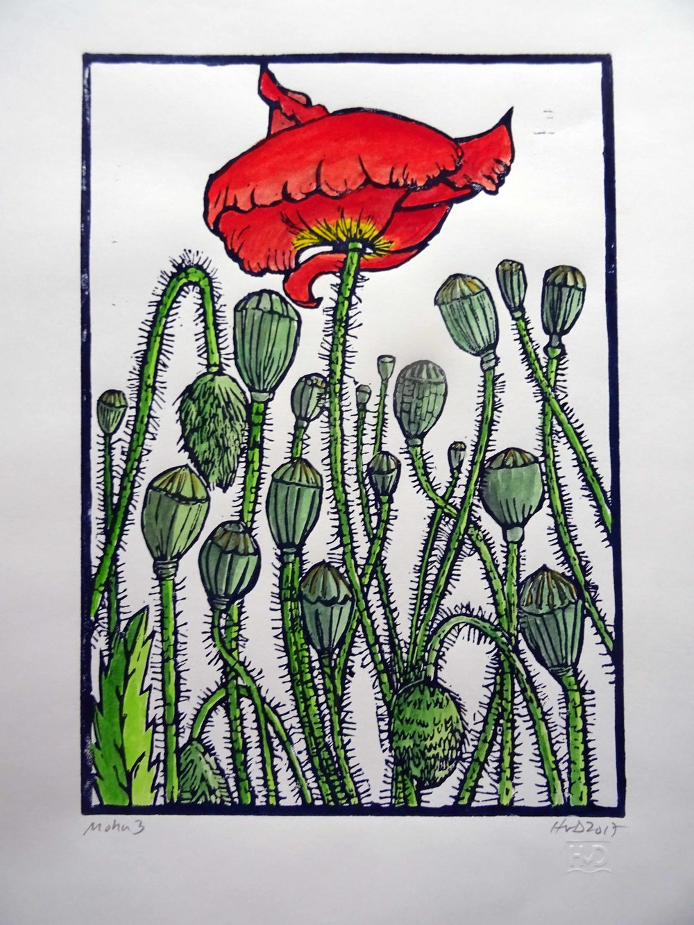 249 - Mohn 2, coloured lino 30x21 cm, 70 €